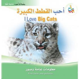 أحب القطط الكبيرة